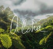 Aloha Handwriting motto Na A fotografii zdjęcia royalty free