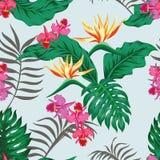 aloha Hawaii bezszwowy deseniowy Fotografia Stock