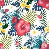 aloha Hawaii bezszwowy deseniowy ilustracji