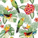 aloha Hawaii bezszwowy deseniowy Obraz Royalty Free