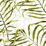 aloha Hawaii bezszwowy deseniowy Akwareli kiwania palma ilustracji