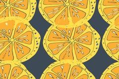 aloha Hawaii bezszwowy deseniowy Dojrzałe sok owoc ręka patroszona Obrazy Royalty Free