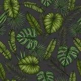 aloha Hawaii bezszwowy deseniowy Tło z palmą opuszcza monstera Obraz Stock