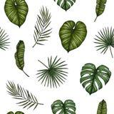 aloha Hawaii bezszwowy deseniowy Tło z palmą opuszcza monstera Zdjęcie Royalty Free