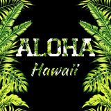 Aloha Hawaii illustration, palm leaves mirror background. Mirrored trendy style illustration of tropic exotic plant palm banana leaves with a flower slogan Aloha Stock Image