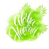 Aloha Hawaii illustration, palm leaves watercolor Royalty Free Stock Photo
