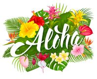 Aloha Hawaii lettering and tropical plants. Aloha Hawaii hand drawn lettering and tropical plants, leaves and flowers. Hawaiian language greeting. Vector royalty free illustration
