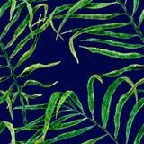 Aloha hawaiisches nahtloses Muster Beeinflussende Palme des Aquarells lizenzfreie abbildung
