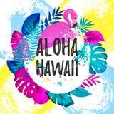 ALOHA insegna gteeting delle HAWAI Foglie di palma tropicali e fondo disegnato rosa della spazzola del fenicottero a disposizione Fotografie Stock Libere da Diritti