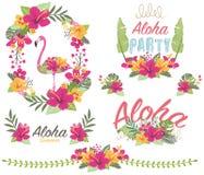 Aloha Kwiecisty flaming ilustracja wektor