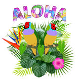 Aloha, progettazione hawaiana della maglietta Fotografia Stock Libera da Diritti