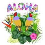 Aloha, projeto havaiano do t-shirt Foto de Stock Royalty Free