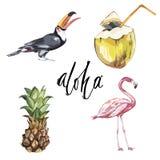 aloha Satz nette tropische Aufkleber mit Blumen, Kokosnuss und Ananas und Vögel Stockfoto