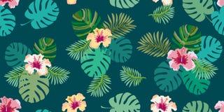 Aloha stampa tropicale bianca e verde Fotografia Stock Libera da Diritti