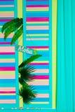 Aloha Summer - cartaz do slogan com maçã do pinho imagens de stock