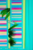 Aloha Summer - slogan poster with pine apple.  Stock Images