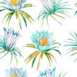 Aloha teste padrão sem emenda havaiano Flores tropicais Imagens de Stock Royalty Free