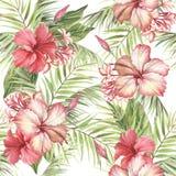 Aloha teste padrão sem emenda havaiano Folhas de palmeira e hibiscus Ilustração da aquarela da tração da mão ilustração stock