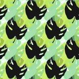 Aloha teste padrão sem emenda havaiano Teste padrão infinito do fundo do verão com folhas do monstera Contexto da natureza do vet Fotos de Stock Royalty Free