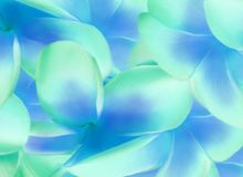 Aloha vecteur dans les bleus Image stock