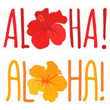 Aloha Vector Lettering with Flower. Vector illustration with text aloha and hibiscus flower Stock Photography