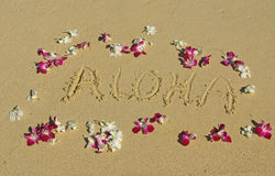 Aloha written in the sand with Orchids in Hawaii Stock Image