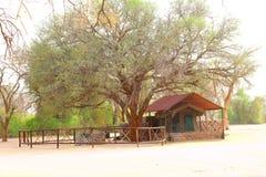 Alojamento luxuoso Damaraland Namíbia da barraca imagens de stock royalty free