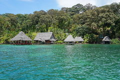 Alojamento tropical do eco na costa das caraíbas de Panamá Imagem de Stock Royalty Free
