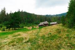 Alojamento velho na floresta, cabine antiga Dia do outono fotos de stock