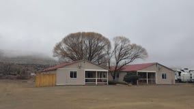 Alojamentos e árvores na névoa Imagens de Stock