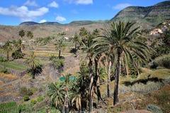 ALOJERA, LA GOMERA, SPAGNA: Alojera con le montagne, le palme ed i campi a terrazze Fotografie Stock