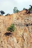 Alone. Single tree on eroded mountain Stock Photos