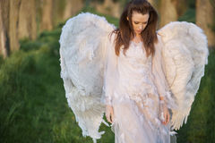 Alone angel walking in the forest Royalty Free Stock Photography