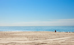 Alone on the beach Stock Photography