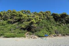 Alone in the beautiful beach Stock Image