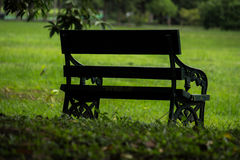 Alone bench in the green yard Stock Photo
