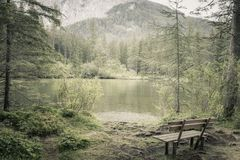 Alone bench in natural forest and lake in mountains royalty free stock image