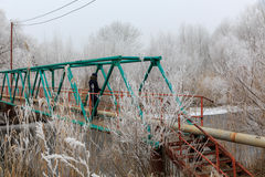 Alone on the bridge.cold winter.snow on the trees Royalty Free Stock Photos