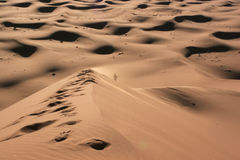 Alone in the desert Royalty Free Stock Images