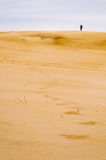Alone in the desert Royalty Free Stock Photo
