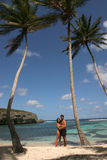 Alone in a deserted island Stock Image