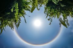 Alone di stupore del sole; l'arcobaleno circolare intorno al sole nel cielo, questo momento è comparso in Tailandia nel 2016 fotografia stock libera da diritti