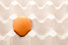 Alone egg Stock Photography