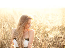 Alone in a field Royalty Free Stock Photography