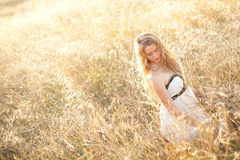 Alone in a field Stock Photography