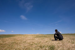 Alone at the field royalty free stock images