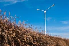 light pole with a blue sky background Stock Image