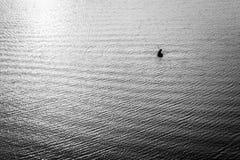 Alone fisher man. B&W Royalty Free Stock Image