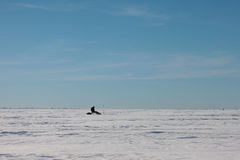 Alone fisherman in snow plain. Blue sky above winter sea Stock Photo