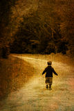 Alone in forest. A child walking in forest Stock Image